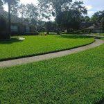Fertilization, pest control, fungus control, San Pablo rd. Jacksonville fl.