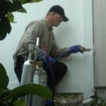 Pest Tube treatment, Pest control, wall injection